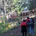Passeggiata tra i boschi di Acri