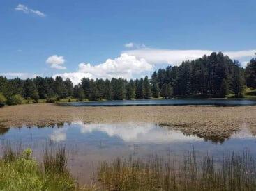 Lago Cecita in Sila vicino Acri