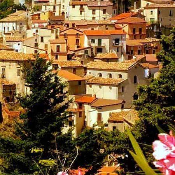 Rione olivella di Acri